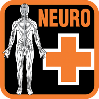DAN On-site Neurological Assessment for Divers (NEURO)